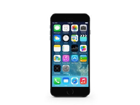 iPhone 6 64GB Gray
